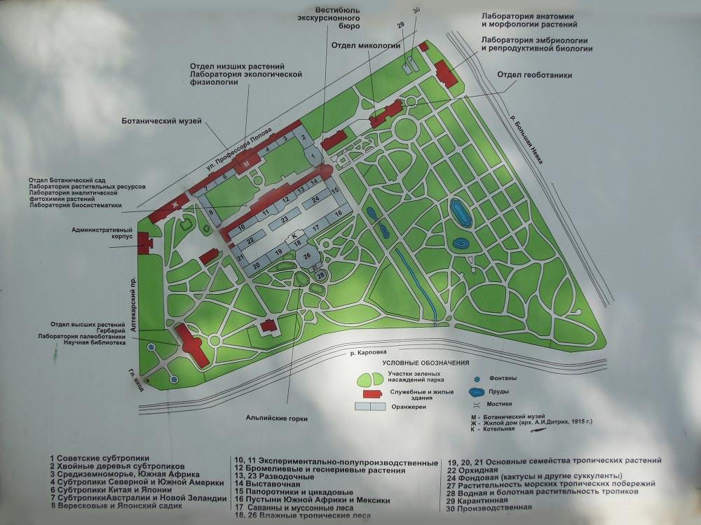 карта ботанического сада спб